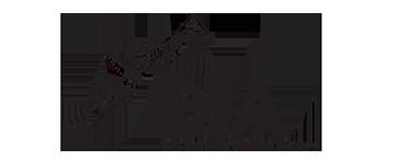 DIA CONNECTING SOFTWARE Logo
